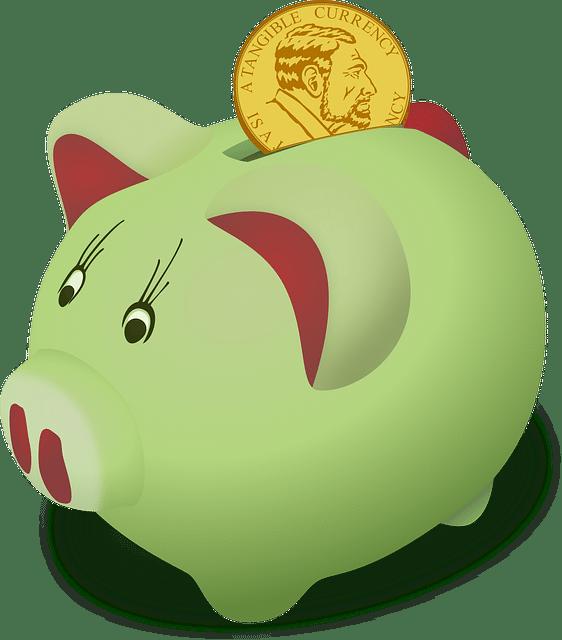 geld verdienen spaarprogramma
